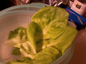 cleaned soft boston bibb lettuce to envelope 'salad ingredients'